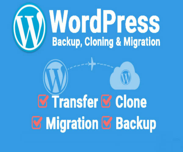 Backup, Cloning & Migration Services
